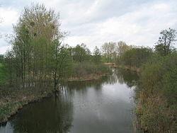 Uckerkanal-Nordblick-Fliessrichtung.JPG