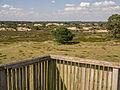 Uitzicht vanaf de uitkijktoren op het Aekingerzand.jpg