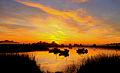 Un lugar para disfrutar, colores que nos regala el amanecer en los humedales.jpg