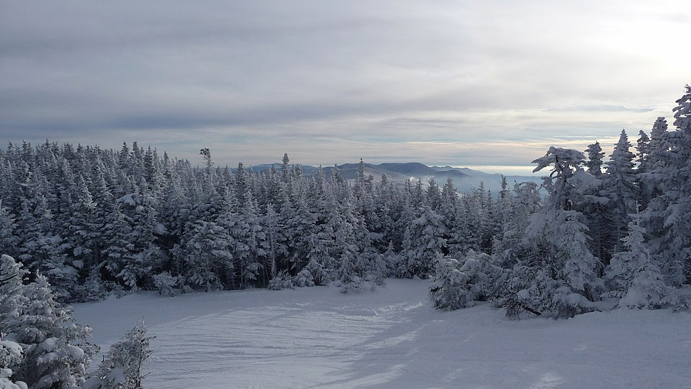 Upper Jester Ski trail, Sugarbush Resort, Warren - panoramio