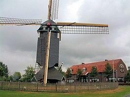 Standerdmolen Van Urmond Wikipedia