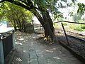 Ursus - panoramio (4).jpg