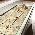 Vampire skeleton of Sozopol in Sofia PD 2012 02.JPG