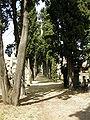 Vecchio cimitero ebraico di firenze 02.JPG