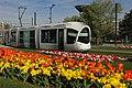 Venissieux-ville-fleurie.jpg