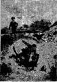 Verne - P'tit-bonhomme, Hetzel, 1906, Ill. page 370.png