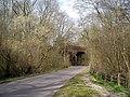 Viaduct over Bullington Lane - geograph.org.uk - 155241.jpg