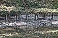 Vidange lac des Minimes avril 2010 - 014.JPG