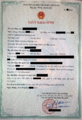 Vietnamese Birth Certificate 2016.png