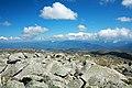 View from top of Mt Kosciuzsko 1.jpg