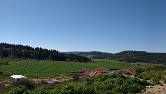 Neve Michael - Green view from Neve Michael
