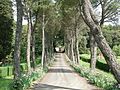 Villa la costaglia, ingresso 02.JPG