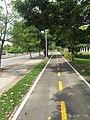 Vista de ciclo-ruta en la Avenida Juan Isidro Daboín.jpg