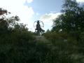 Vlakte van Waalsdorp (Waalsdorpervlakte) 2016-08-10 img. 362.png