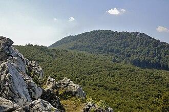 Vysoká (Carpathian mountain) - Vysoká as seen from Taricové skaly