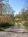 Waldlehrpfad in Daxlanden - geo.hlipp.de - 2928.jpg