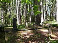 Waldo Cemetery - Cave Junction Oregon.jpg