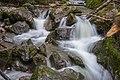 Waldshut-Tiengen Indlekofen Haselbach Wasserfall Bild 4.jpg