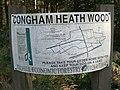 Walkers' map, Congham Heath Wood - geograph.org.uk - 583731.jpg