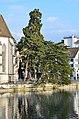 Wasserkirche - Limmat - Münsterbrücke 2014-03-05 16-29-17.JPG