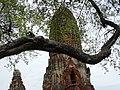 Wat Phra Ram - Ayutthaya - Thailand - 05 (34801234712).jpg