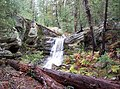 Waterfall stream atop Mogollon Rim (3910802312).jpg