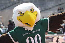 """Swoop"", the EMU mascot, at the 2010 homecoming football game against the Ohio Bobcats."