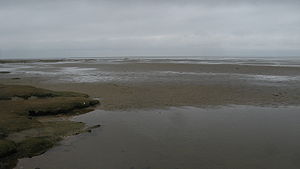 Westerhever - Salt marshes and Wadden Sea