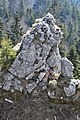 Wikimedia Start Republic of Srpska 2019 596.jpg