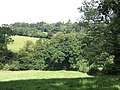Wooded country south of Boconnoc - geograph.org.uk - 492604.jpg