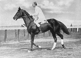 Donau (horse) - Donau's full-brother Wooltex being ridden by his owner George S. Patton in 1914.