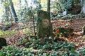Wuppertal - Krummacherstraße - Friedhof - Wald - Pina 02 ies.jpg