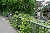 Wuppertal Sonnborner Ufer 2016 015.jpg
