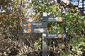 Yongmasan (용마산) Trail markers.JPG