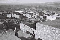 Zarin 1949.jpg