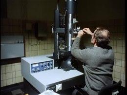 Bestand:Ziektebestrijding en veredeling van bol- en knolgewassen-33094.ogv