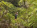 Ziplining at Canopy San Lorenzo in San Ramon, Costa Rica.jpg
