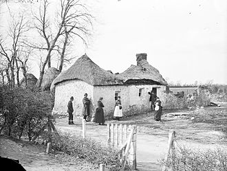 History of County Kildare - Evicitions in Clongorey