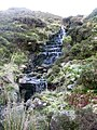 (Another) waterfall in Wolf Cleugh - geograph.org.uk - 608989.jpg