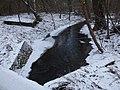 «Пляхова», Деснянський район, ручай Пляховий річки Дарниця.jpg