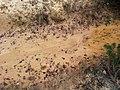 Żródło w starej piaskowni w Bukownie - panoramio (1).jpg