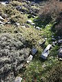 Ανάβαση Τσίβη 7.jpg
