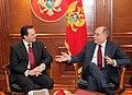 Επίσκεψη ΥΠΕΞ κ. Δ. Δρούτσα σε Μαυροβούνιο - Visit of FM D. Droutsas to Montenegro (5392529437).jpg