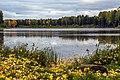 Аленушкин пруд в окрестностях села Рябово.jpg