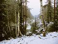 Водопад Кивач на Суне.jpg