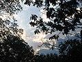 В парке - panoramio.jpg