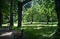 Дендрологічний парк на вул. Коцюбинського 08.jpg