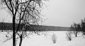 Джамгаровка зимой - panoramio.jpg