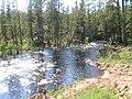Мыла, небольшая таёжная речка в центральной Якутии.jpg
