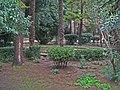 Парковые куртины(грядки) - panoramio.jpg